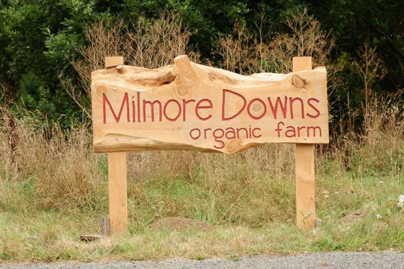 Milmore Downs